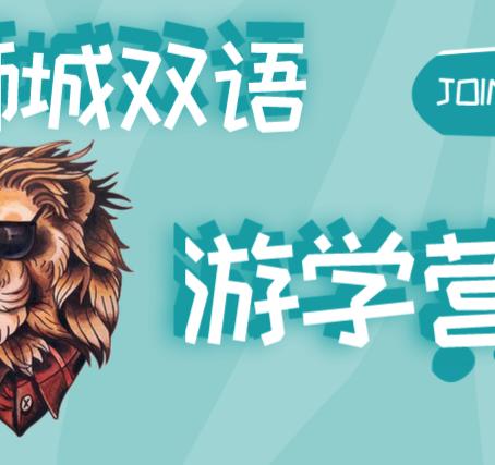 狮城夏令营常年招生