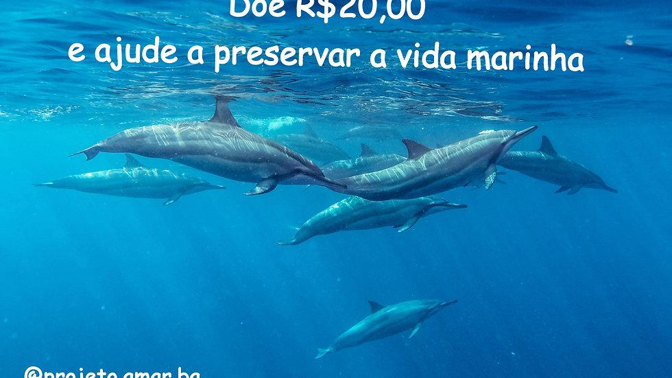 Doe R$20,00