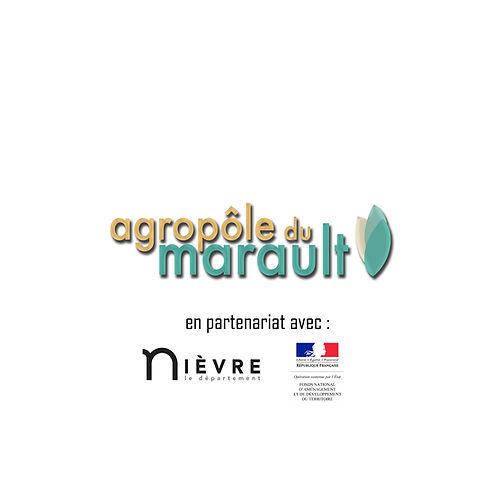 logo_site_avec_département_et_fnadt.jpg