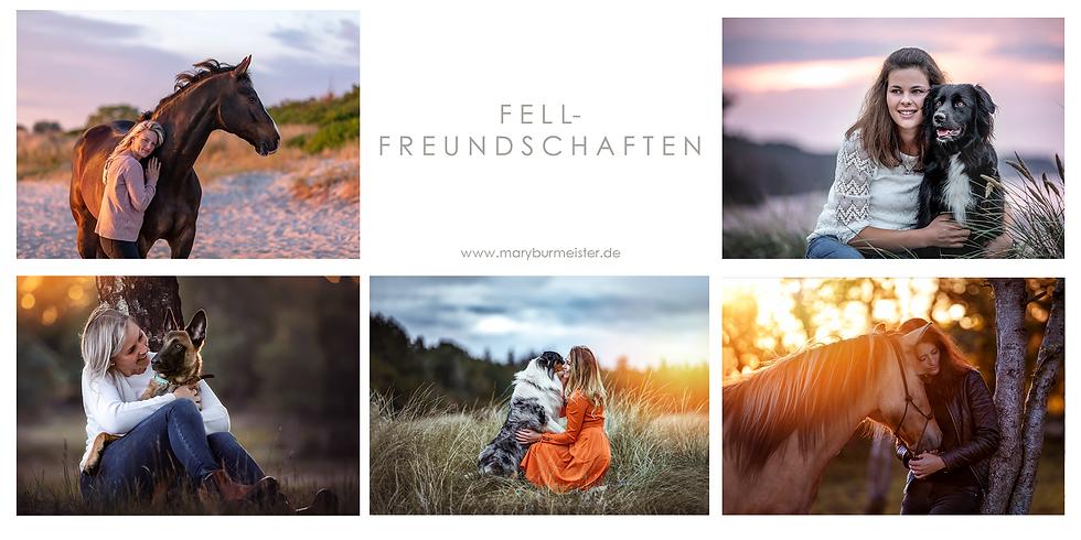 Fell- Freundschaften Sommer Special