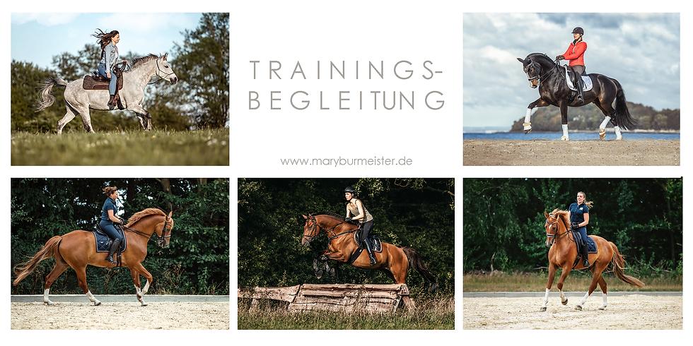 Trainings- Begleitung Special