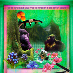 Gorillas on the stage2