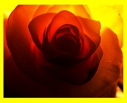 Edited Image 2014-5-15-15:43:39