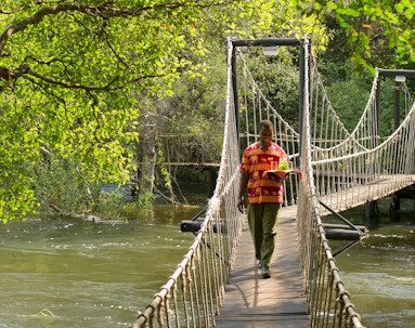Rope Bridge LR11.jpg