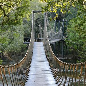 Islands of Siankaba rope bridge.jpg