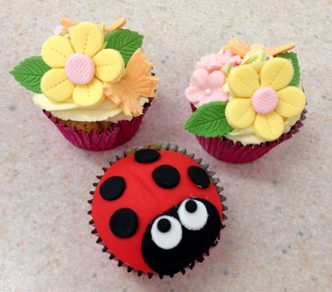 Ladybird & Blossom
