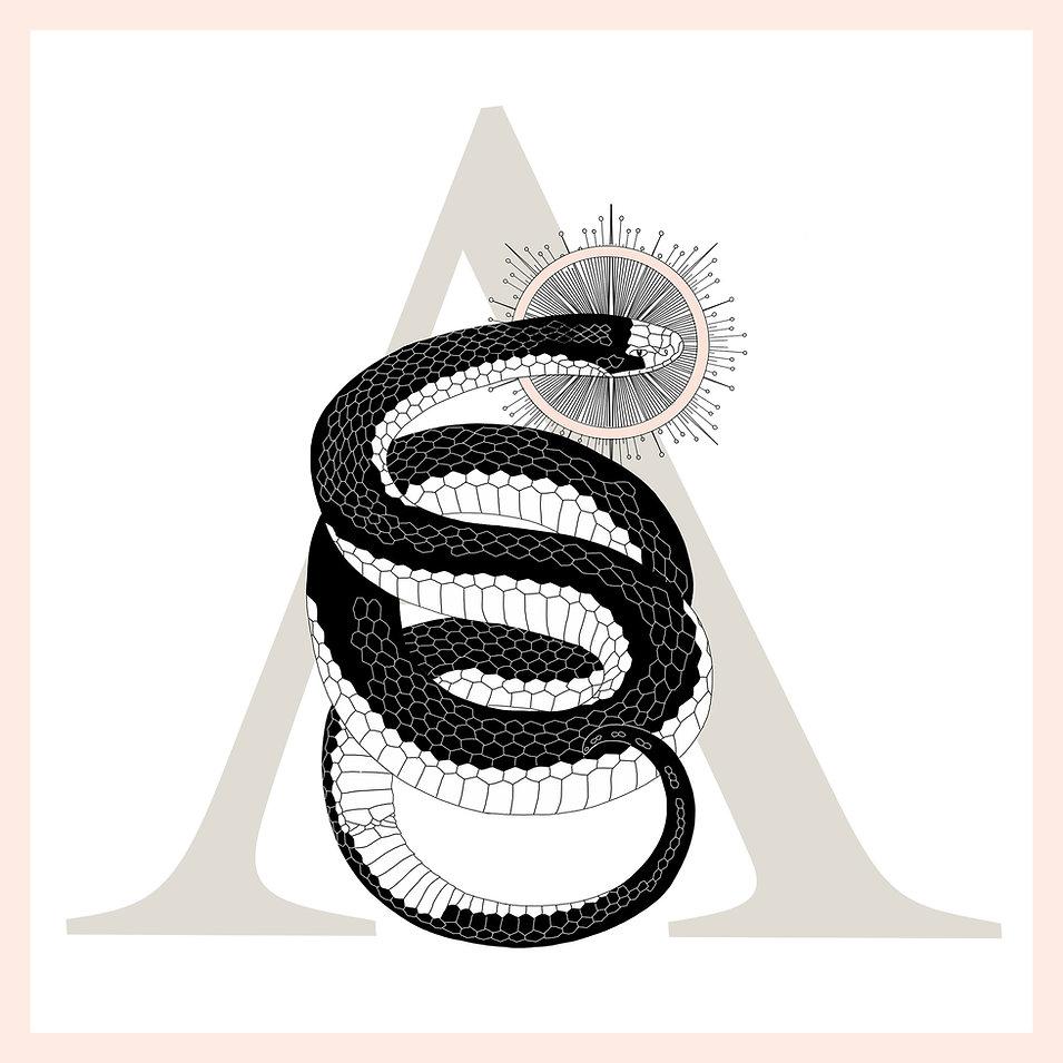 White Snake Edited cropped2.jpg