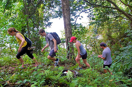 Hiking Manuel Antonio - Group Specials - Mangrove Monkey Tour