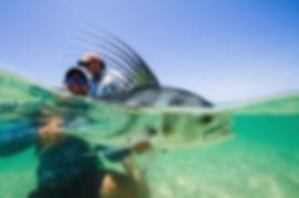 underwater-roosterfish.jpg