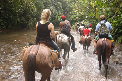 Horse Back Riding Manuel Antonio - Group Specials