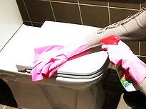 nettoyage sanitaires.jpg