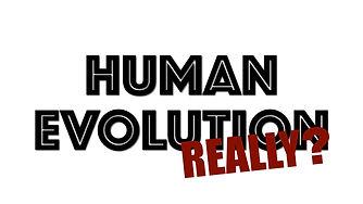 Human Evolution WIDE.002.jpeg