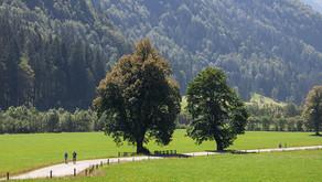 Logarska dolina - Slap Rinka izlet