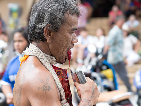 Vegetarijanski festival / Phuket Tajska – Kri Bolečina Trpljenje