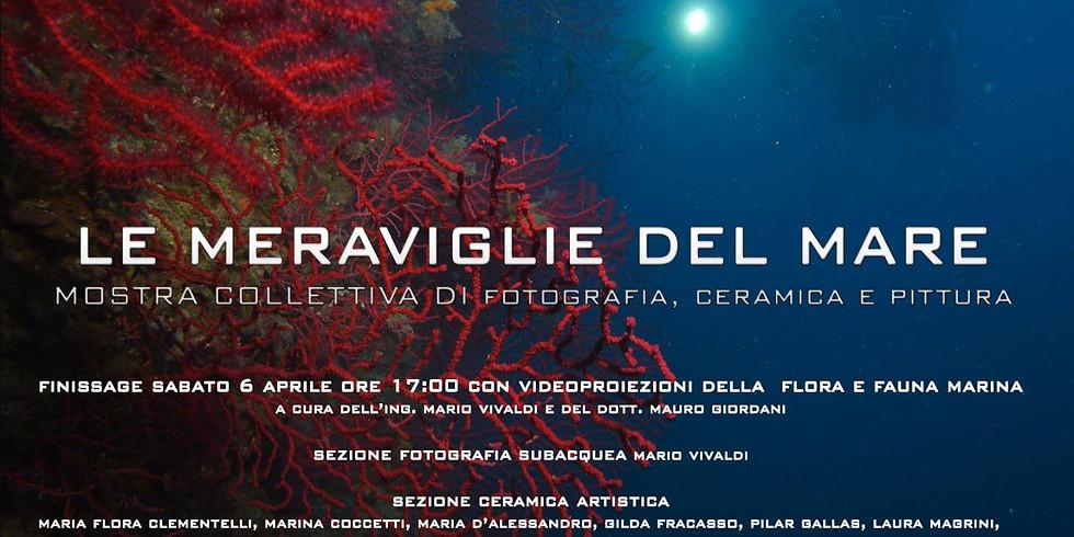 Le Meraviglie del Mare, collettiva di fotografia, ceramica, pittura, Roma.