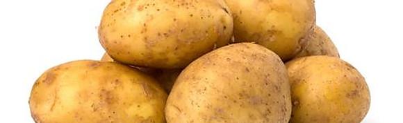 Aardappelproducten bewerkt & onbewerkt
