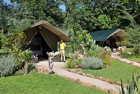 Woodlands at Waterberry Tent 3.jpg