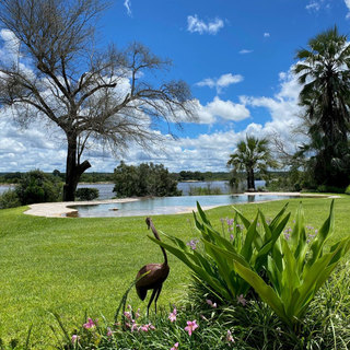 Beautiful infinity pool at Waterberry River FarmhouThe infinity pool is perfect for families at River Farmhouse, with views overlooking the Zambezi River