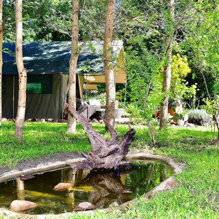 Waterholes and bird and wildlife friently surroundings at The Woodlands, Waterberry Lodge, Zambia