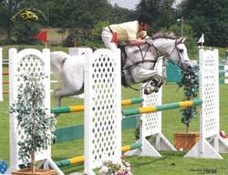 Annie, show jumping
