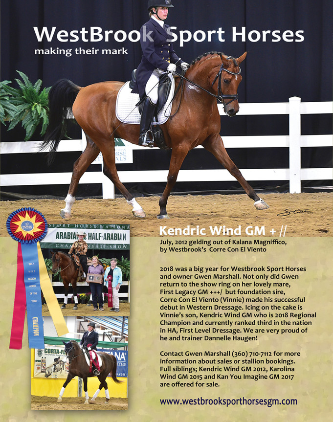 WestBrook Sport Horses 2018 show season