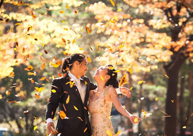 new-zealand-wedding-elopements-53.jpg