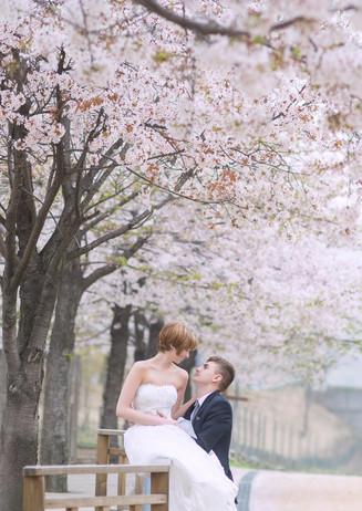new-zealand-wedding-elopements-1.jpg
