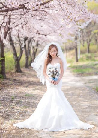 new-zealand-wedding-elopements-42.jpg