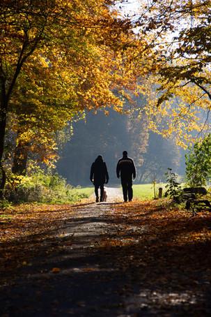 «Περιπατητική» ψυχοθεραπεία ή αλλιώς, περπατώντας προς την Ψυχική Υγεία