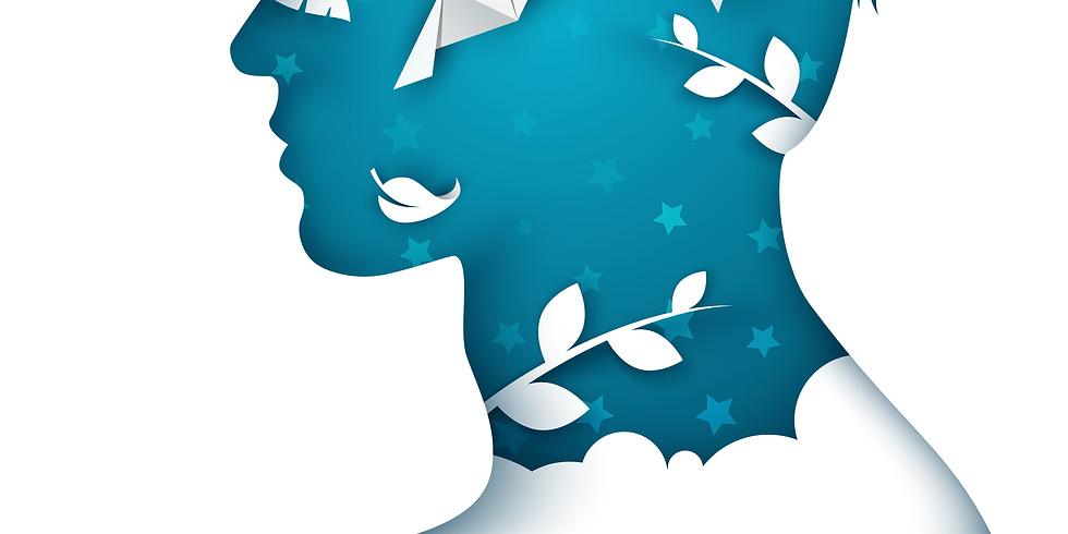 São Luis - MA - Capacitação em manejo comportamental de transtornos psiquiátricos (2)