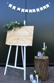 bruiloft wim en tinette24.jpg