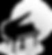 ASP21 logo_edited.png