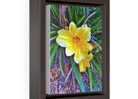 Yellow Spring Framed Canvas