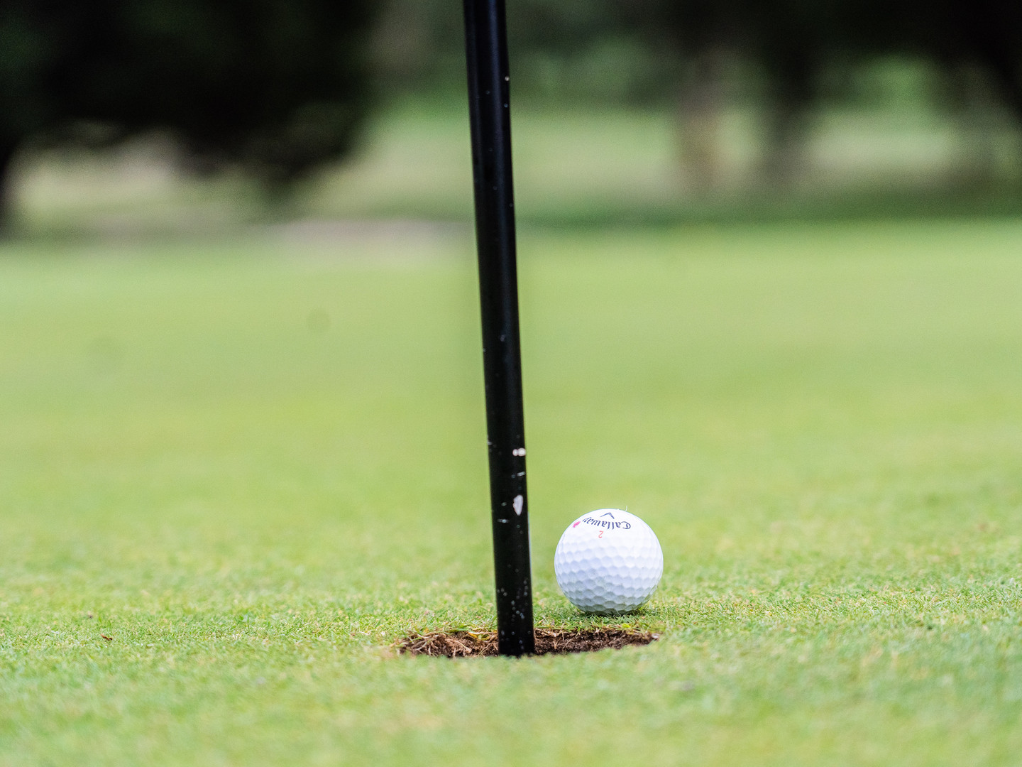Golf ball going into the hole on the 18 hole PGA championship golf course at Hidden valley resort in Wallan