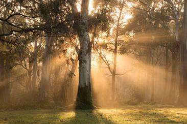 Tiffany Warner Landscape Photography