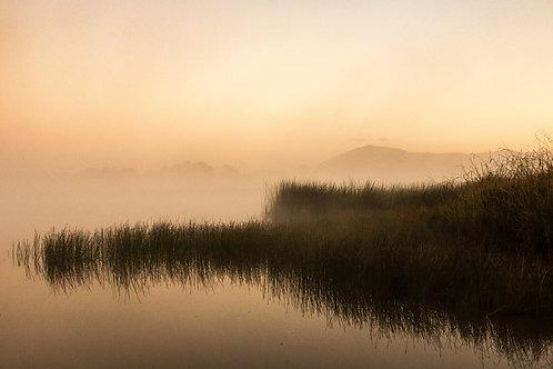 'Morning Fog' Fine Art Print