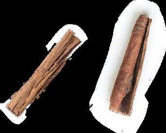 Cassia-Cinnamon-1.png