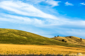 The rolling hills of Victoria