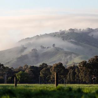 Melbourne Quantity Surveyors Landscape Building Project