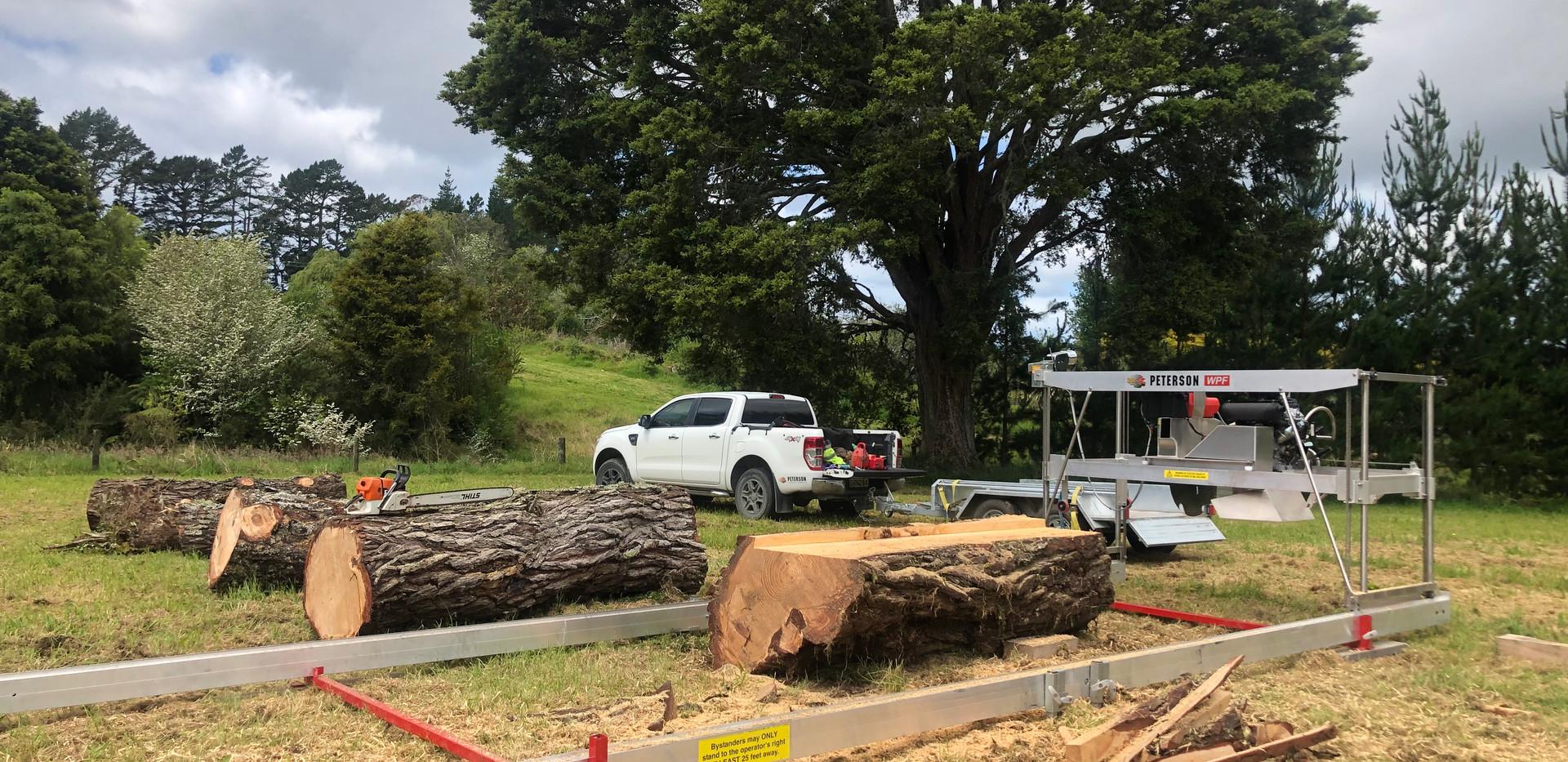Timber Scene Ltd Auckland New Zealand