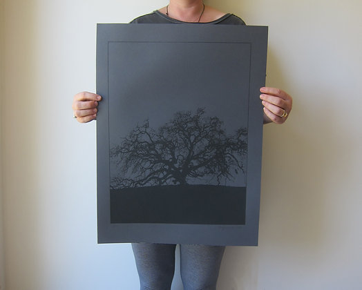 Tree Print - Black Stock