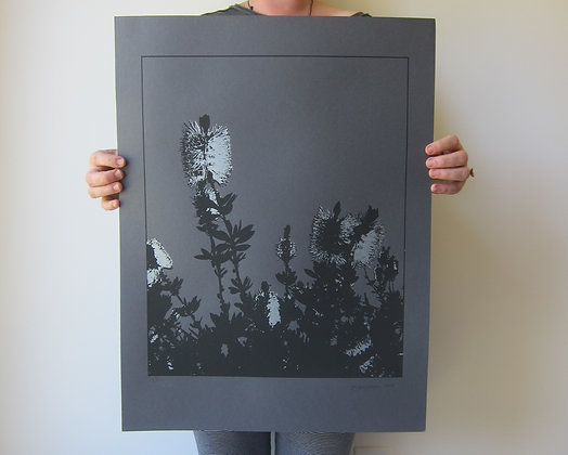 Bottle Brush Print - Black Stock