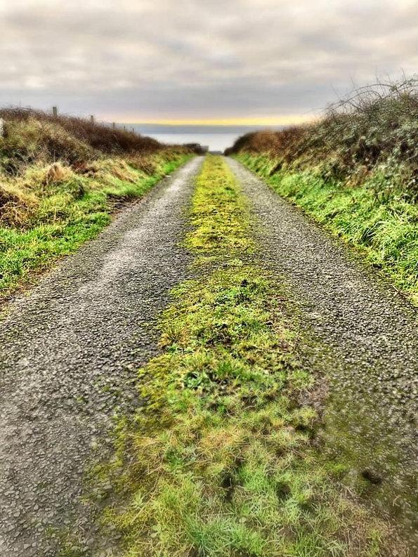 green road to beach.jpg