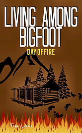 new new day of fire cover 1542x2482.jpg