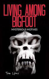 Mysterious Motives cover 1542x2482.jpg
