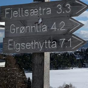 Trøndelag Traditions