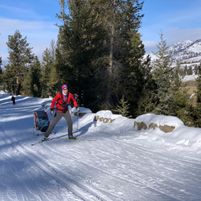 Yellowstone Cross-Country Ski Trails (Gardiner Entrance)