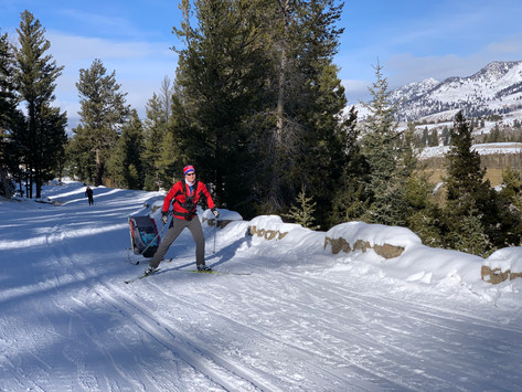 Yellowstone Cross-Country Ski Trails (Gardiner Entrance)
