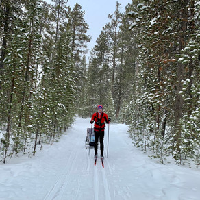 West Yellowstone Cross-Country Ski Trails (beyond Rendezvous)