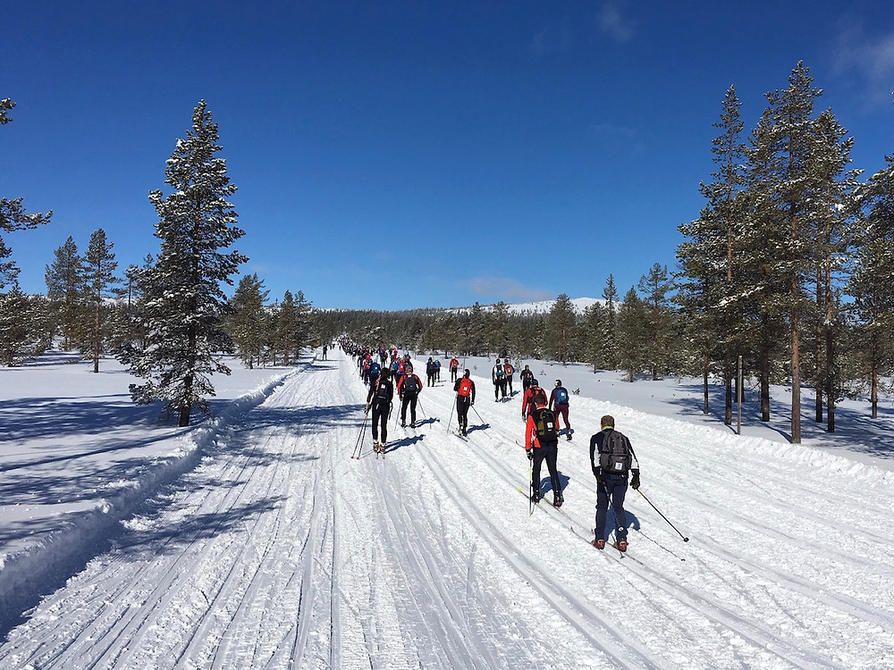 Beautiful day at the 2019 Birkebeinerrennet between Rena and Lillehammer, Norway.